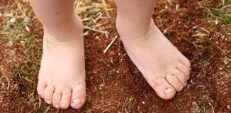 חמשת האלמנטים בילדים