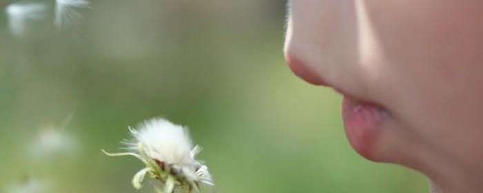 טיפול באלרגיה בשיטת האיזון