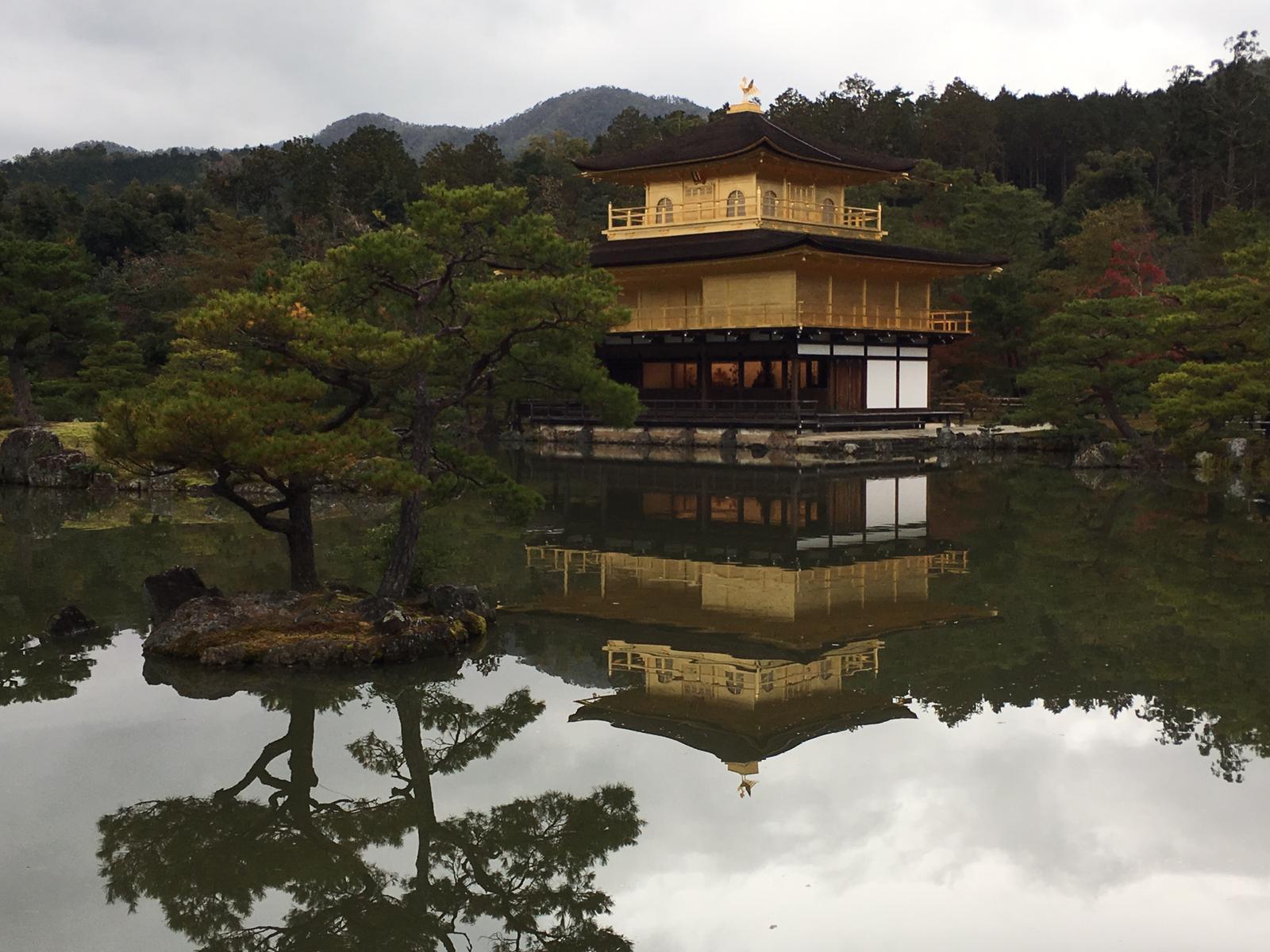 מסע לימודי ליפן